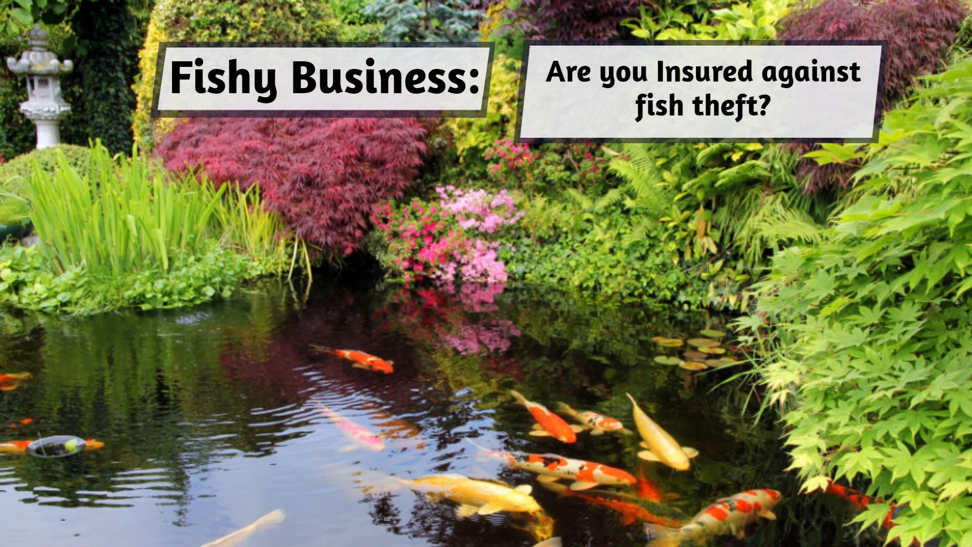 Fish theft